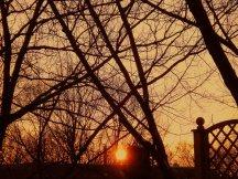 Le soleil se couche le 11 février 2008